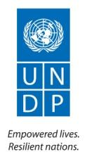 http://www.witfor.org/images/stories/undp_logo_medium.jpg